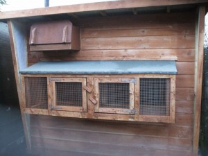 8x6-pigeon-Loft-300x225