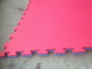 Martial Arts Mats 1x1 meter interlocking.