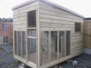 10x6-Delux-Dog-Kennel-with-covered-Run-004-300x224