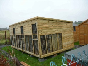 18x10-Dog-Shed-and-Run-001-300x225