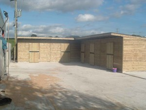 4-12X12-STABLES-+18X12-FEED-ROOM-300x225