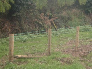 Horse & Stock Fencing for Sale
