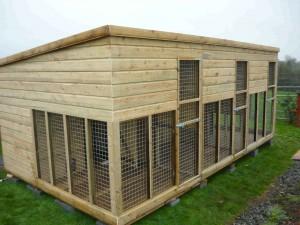 Dog Kennels Dog Runs Amp Cat Houses For Sale Ireland